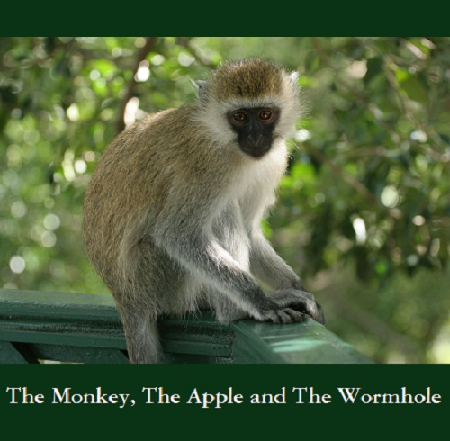 The Monkey, The Apple and The Wormhole