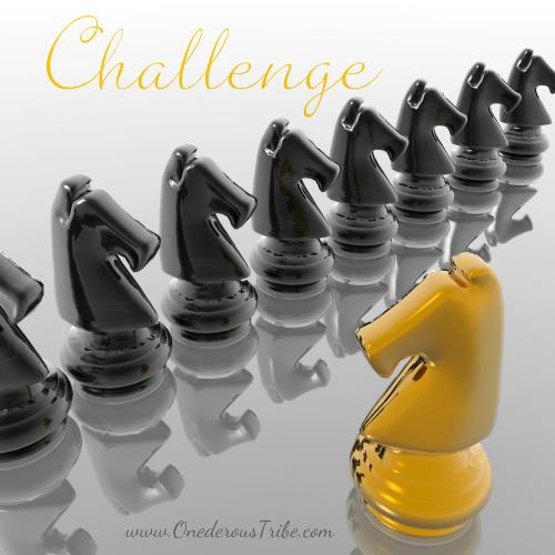Challenge Divine Inspiration