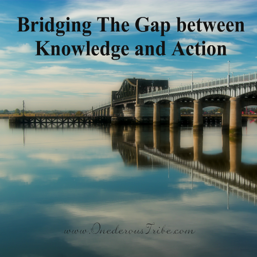 Bridging the Gap Inspired Action