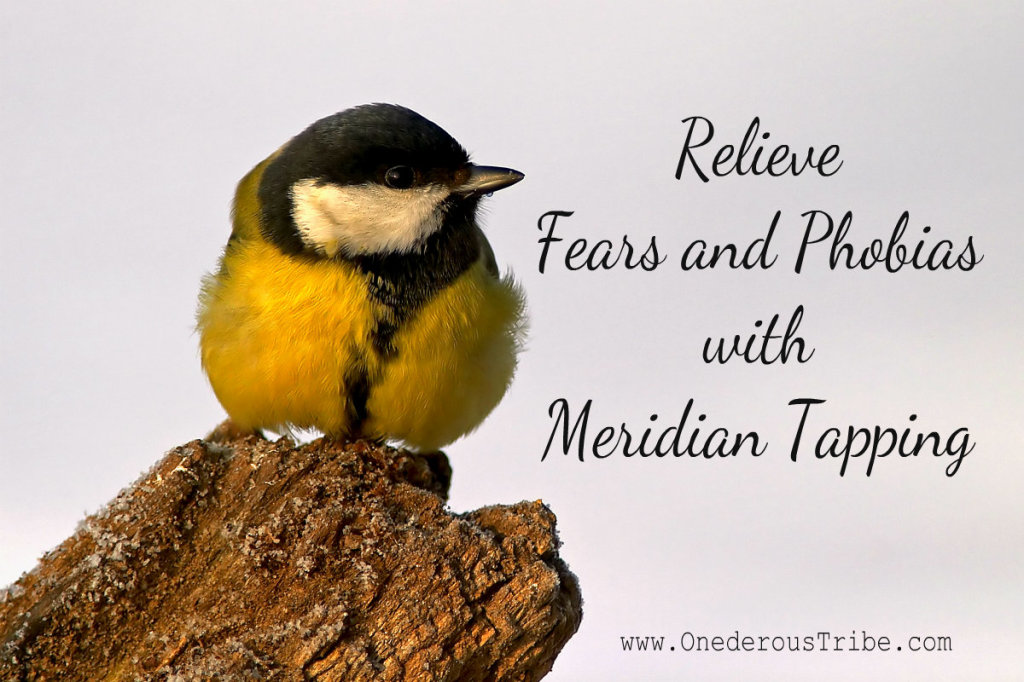 Relieve Fears and Phobias with Meridian Tapping Inspired Action