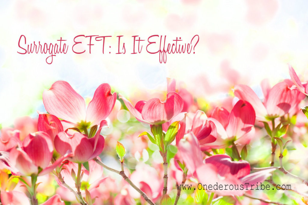 Surrogate EFT Is It Effective Inspired Action