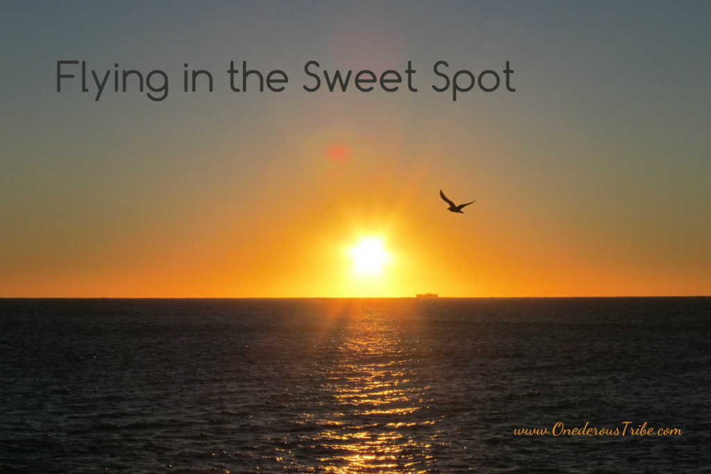 Flying in the Sweet Spot